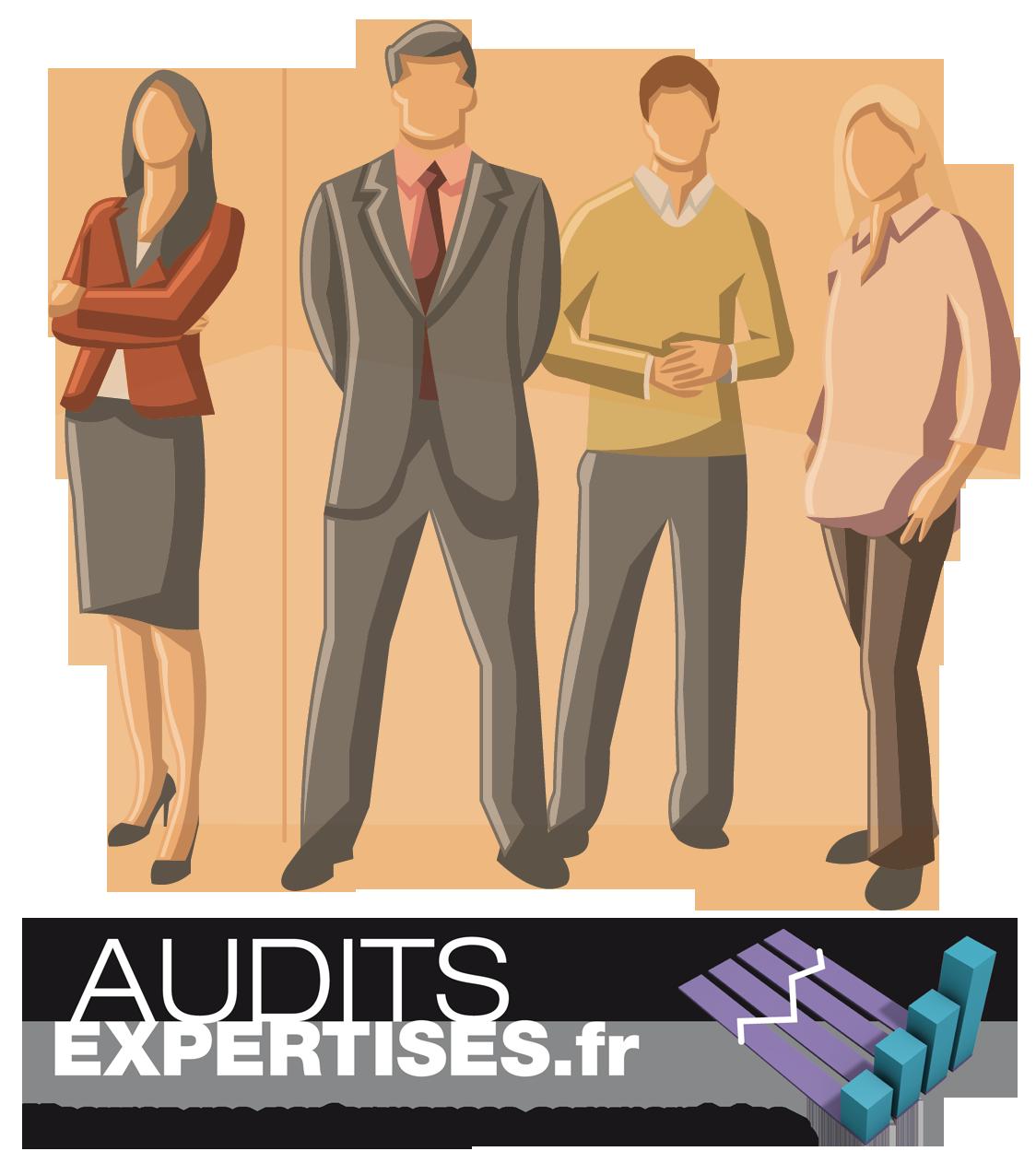 équipe audits expertises
