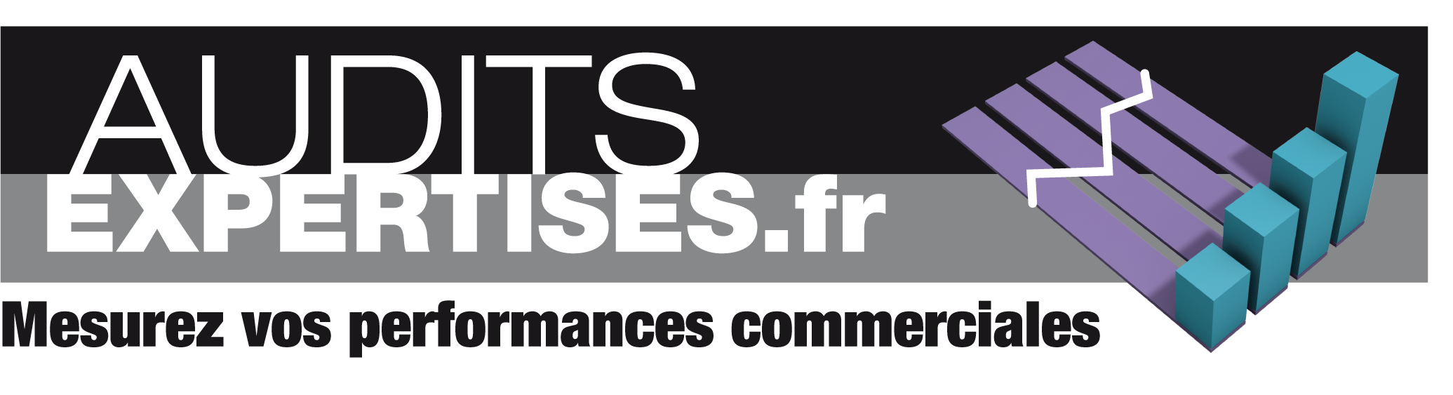 Logo Audits Expertises